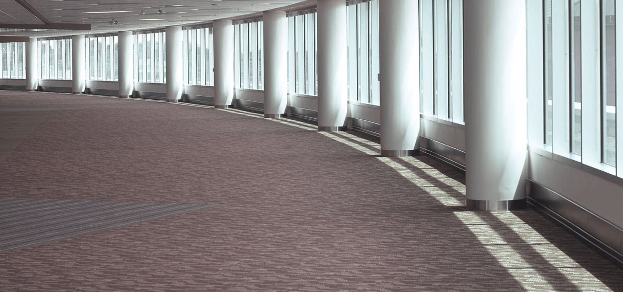 Why You Should Hire Professional Carpet Cleaner for Your Business