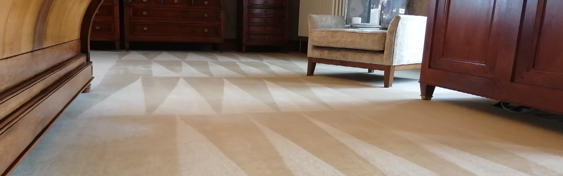 Why You Should Clean Carpets Regularly
