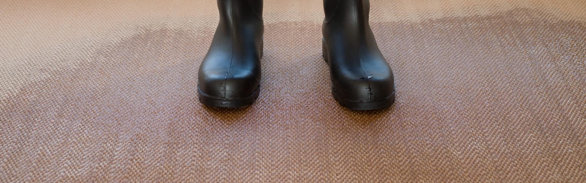 Hire Experts for Flood Damage Carpet Restoration